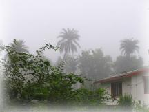 Early Morning Due in Mount Abu - Hotels in Mount Abu