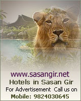 Sasan Gir - About Hotels In  Sasan Gir