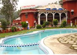 Hotel Savera Palace
